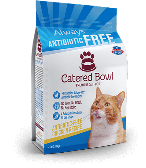 Antibiotic Free Chicken Premium Dry Cat Food Catered Bowl